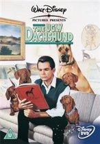 Ugly Daschund (import) (dvd)