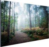 Een mistig pad door het bos Aluminium 90x60 cm - Foto print op Aluminium (metaal wanddecoratie)
