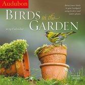 Audubon Birds in the Garden Kalender 2019