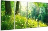 Glasschilderij Natuur   Groen   160x80cm 4Luik   Foto print op Glas    F005997