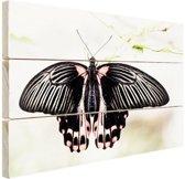 Zwart-roze vlinder Hout 60x40 cm - Foto print op Hout (Wanddecoratie)