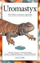 Uromastyx (Advanced Vivarium Systems)