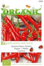 Buzzy® Organic Peper Cayenne (BIO)