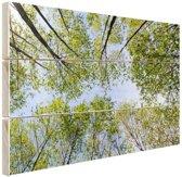 Foto van het bos in de zomer Hout 80x60 cm - Foto print op Hout (Wanddecoratie)