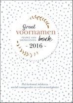 Groot voornamenboek 2016