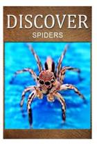 Spiders - Discover