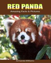 Red Panda: Amazing Facts & Pictures