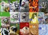Biologie voor jou werkboek 2a+b vmbo-t/h/v