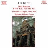 Bach J. S.: Trio Sonatas 1-3