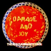 Damage And Joy (LP)