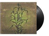Laughing Stalk (LP+Cd+Download)