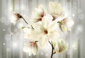 Fotobehang Flowers Magnolia  | XXL - 312cm x 219cm | 130g/m2 Vlies