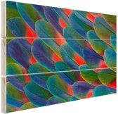 Detail veren papegaai Hout 120x80 cm - Foto print op Hout (Wanddecoratie)