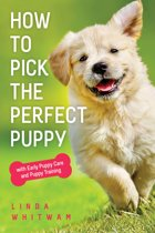 How to Pick the Perfect Puppy