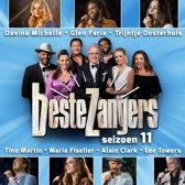 CD cover van Beste Zangers - Seizoen 11 van De Beste Zangers