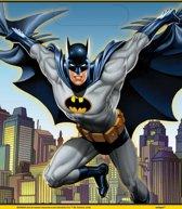 Batman Uitdeelzakjes 23x16,5cm 8 stuks