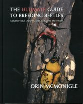 The Ultimate Guide to Breeding Beetles