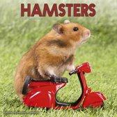Hamsters Kalender 2020