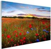 Tuin van Eden Glas 30x20 cm - klein - Foto print op Glas (Plexiglas wanddecoratie)