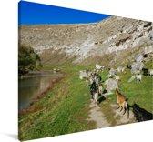Kudde geiten bij het Europese landschap van Orheiul Vechi in Moldavië Canvas 120x80 cm - Foto print op Canvas schilderij (Wanddecoratie woonkamer / slaapkamer)