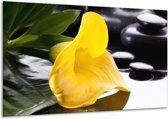 Glasschilderij Bloem   Geel, Zwart, Wit   120x70cm 1Luik   Foto print op Glas    F004043