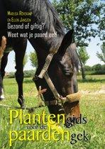 Plantengids voor de paardengek - Gezond of giftig? Weet wat je paard eet!