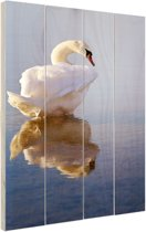 Zwaan  Hout 80x120 cm - Foto print op Hout (Wanddecoratie)