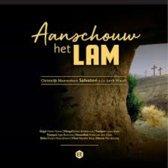 Aanschouw het lam // Christelijk Mannenkoor Salvatori o.l.v. Jorrit Woudt // Orgel + combo // 15 liederen voor passie en pasen.