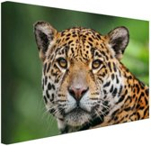 FotoCadeau.nl - Close-up luipaard  Canvas 80x60 cm - Foto print op Canvas schilderij (Wanddecoratie)