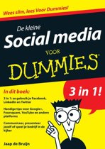 Voor Dummies - De kleine social media voor Dummies