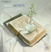 Bach - Motetten