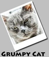 Grumpy Cat (Journal / Notebook)