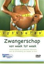 Zwangerschap Van Week Tot Week