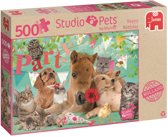 Studio Pets Happy Birthday 500