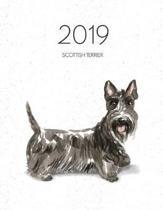2019 Scottish Terrier