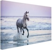 FotoCadeau.nl - Paard op het strand Canvas 80x60 cm - Foto print op Canvas schilderij (Wanddecoratie)