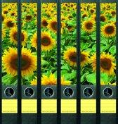 Rugetiket Sunflower field-6
