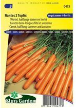 Sluis Garden - Wortel Nantes 2 Topfix