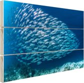 School met vissen Hout 60x40 cm - Foto print op Hout (Wanddecoratie)