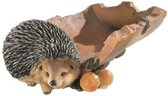 Decoratieve egel voederbak