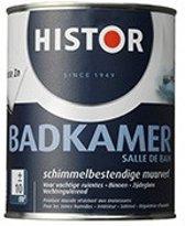 Muurverf Badkamer Zijdeglans - 1 Liter