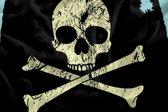 dekbedovertrek Piraat - Eenpersoons - +: 1 sloop 60x70 cm
