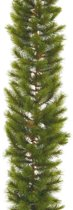 Triumph Tree slinger richmond pine maat in cm: 270 x 30 groen