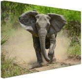 FotoCadeau.nl - Rennende olifant Canvas 80x60 cm - Foto print op Canvas schilderij (Wanddecoratie)