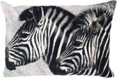 groot kussen fluweel zebra's grijs