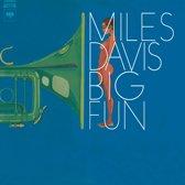 Big Fun (LP)