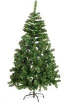 Kerstboom zilverspar 90 cm