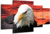 Canvas schilderij Vogel | Wit, Rood, Zwart | 160x90cm 4Luik