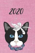 2020 dicker TageBuch Kalender Katze: 1 Werktag pro DIN A5 Seite und Wochenende -Samstag + Sonntag- pro DIN A5 Seite