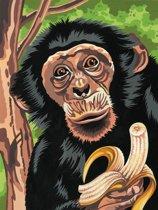 Schilderen op nummer - chimp